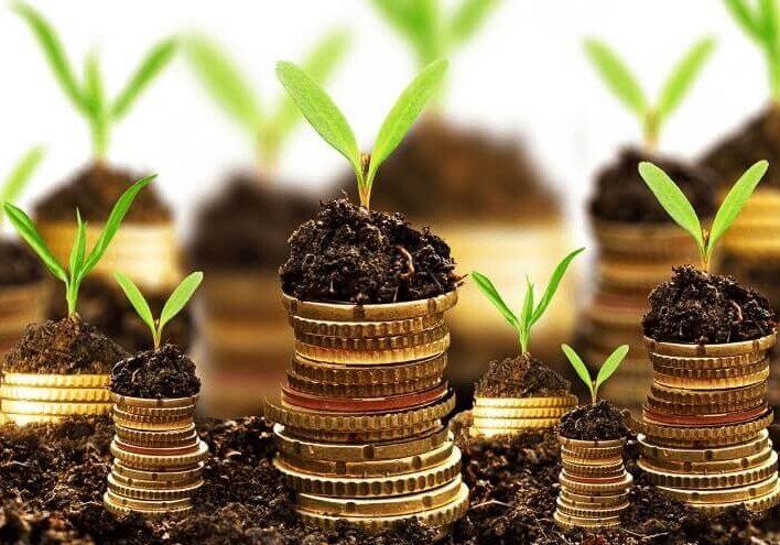 برای موفقیت در سرمایه گذاری با قدم های کوچک آغاز کنید | علی خادم الرضا مدرس مشاور و نویسنده کارآفرینی و مدیریت کسب و کار | DBA کارآفرینی دانشگاه تهران